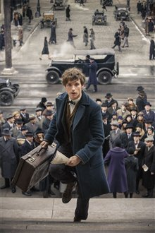 Fantastic Beasts and Where to Find Them Photo 60