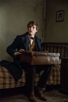 Fantastic Beasts and Where to Find Them photo 61 of 63