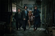 Fantastic Beasts and Where to Find Them Photo 23