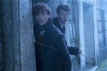 Fantastic Beasts: The Crimes of Grindelwald Photo 73