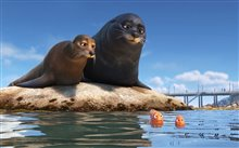 Finding Dory photo 17 of 29