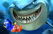 Finding Nemo Photo 2