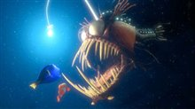 Finding Nemo Photo 6