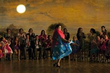 Flamenco, Flamenco Photo 7