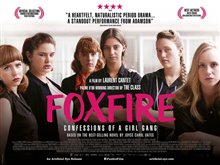 Foxfire: Confessions of a Girl Gang photo 1 of 2