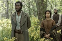 Free State of Jones photo 13 of 19