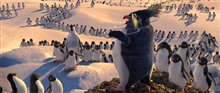 Happy Feet Photo 9