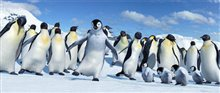 Happy Feet Photo 17