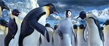 Happy Feet Photo 19