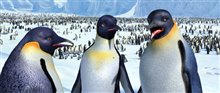 Happy Feet Photo 29 - Large