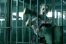 Harley Quinn: Birds of Prey Photo 14
