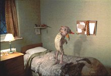 Harry Potter and the Chamber of Secrets Photo 12