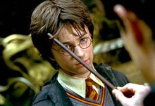 Harry Potter and the Chamber of Secrets Photo 16