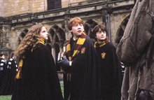 Harry Potter and the Chamber of Secrets Photo 24