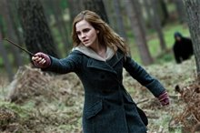Harry Potter and the Deathly Hallows: Part 1 photo 39 of 78