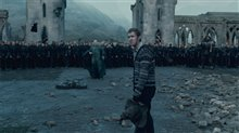 Harry Potter and the Deathly Hallows: Part 2 Photo 49
