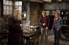 Harry Potter and the Deathly Hallows: Part 2 Photo 67