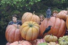 Harry Potter and the Prisoner of Azkaban Photo 10