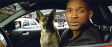 I Am Legend Photo 15