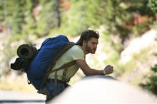 Into the Wild Photo 4