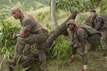 Jumanji: Welcome to the Jungle photo 6 of 12