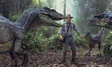Jurassic Park III Photo 4