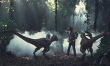 Jurassic Park III photo 6 of 15