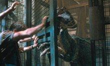 Jurassic Park III photo 10 of 15