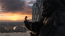 King Kong Photo 24