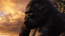 King Kong Photo 26