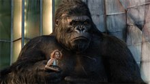 King Kong Photo 28