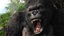 King Kong Photo 32