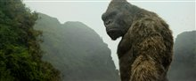 Kong: Skull Island Photo 15