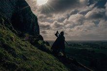 Le chevalier vert Photo 1