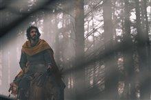 Le chevalier vert Photo 5
