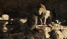 Le roi lion Photo 21