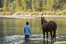 Lean on Pete Photo 3