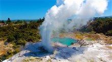 Les Aventuriers Voyageurs : Nouvelle-Zélande - Île du nord Photo 1