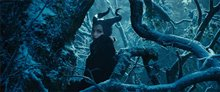 Maleficent photo 3 of 35