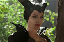Maleficent photo 8 of 35