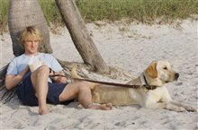 Marley & Me Photo 1