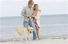 Marley & Me Photo 8