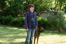 Max (2002) photo 2 of 5