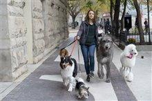 Mes voyages de chien Photo 5
