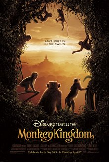 Monkey Kingdom Photo 6