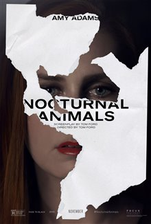 Nocturnal Animals Photo 4