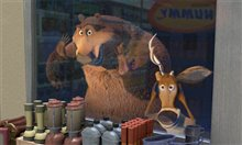 Open Season Photo 4