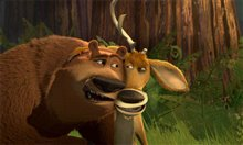 Open Season Photo 10