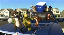 Over the Hedge Photo 8