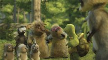 Over the Hedge Photo 10